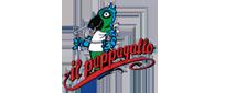 Pizzeria il Pappagallo